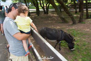 visitar cabarceno con un bebe