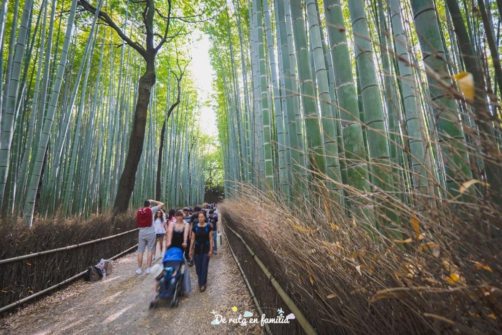 Como Ir Hasta El Famoso Bosque De Bambu De Arashiyama De Kyoto