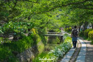 visitar Kyoto norte higashiyama