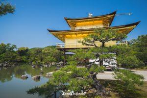 visitar Kyoto pavellon dorado