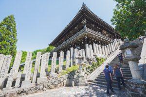 visitar nara desde kyoto u osaka