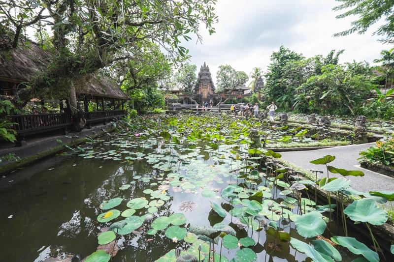 Las 10 cosas que no puedes dejar de ver y hacer en Ubud, la capital de Bali