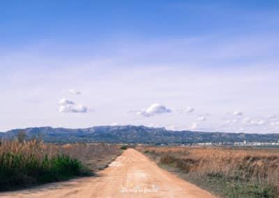 ruta por cataluña delta del ebro